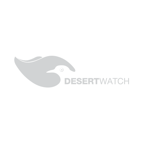 desert watch lanzarote
